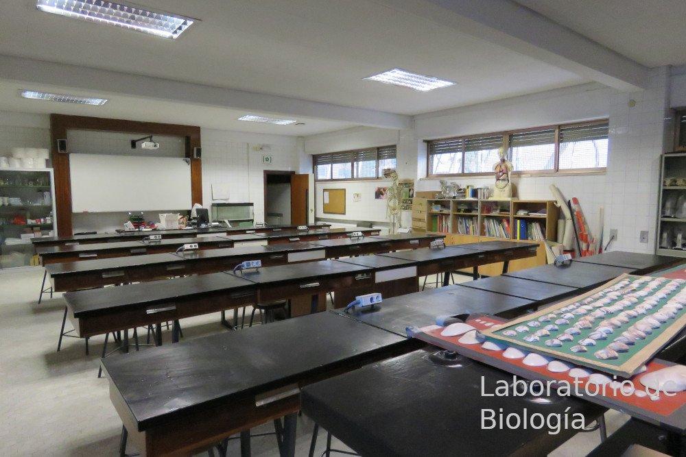6 - laboratorio_biologia